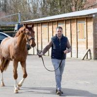 jorgemagarinohorses_karim1